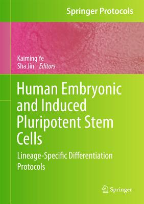 Human Embryonic and Induced Pluripotent Stem Cells By Ye, Kaiming (EDT)/ Jin, Sha (EDT)